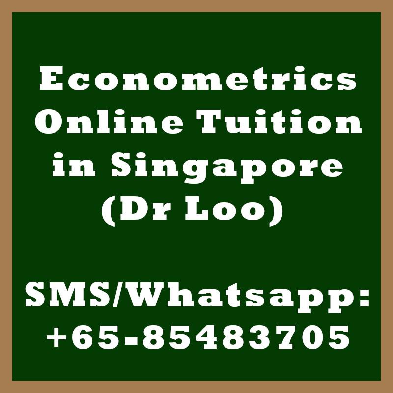 Econometrics Online Tuition Singapore
