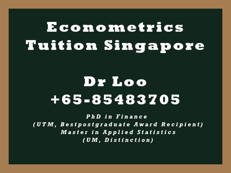 Econometrics Private Tuition in Singapore