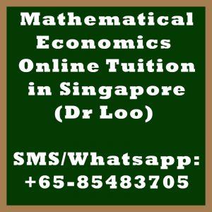 Mathematical Economics Online Tuition Singapore