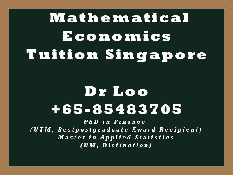 Mathematical Economics Private Tuition Singapore