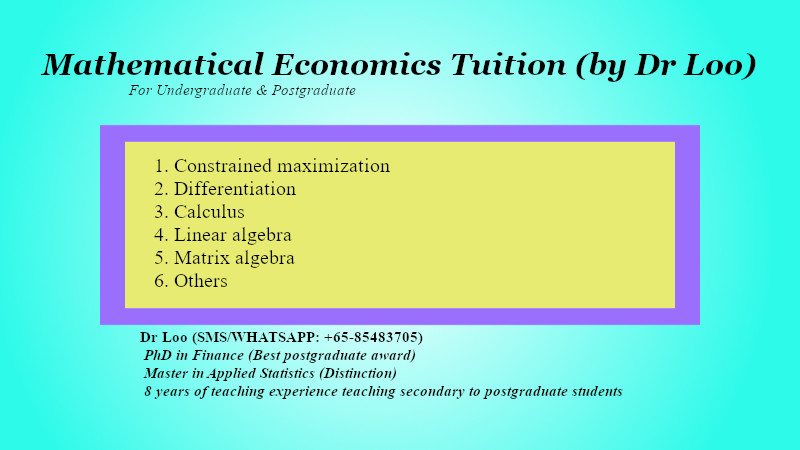 Mathematical Economics Tuition in Singapore
