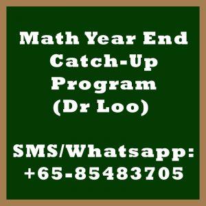 Maths Year End Catch Up Program Singapore