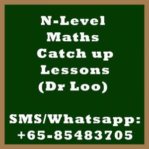 Singapore N-Level Maths Year End Catch Up Program